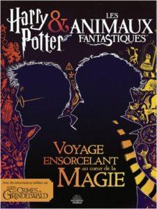 Harry PotterauxAnimaux fantastiques, le monde des sorciers dévoile ses secrets ! - Copie