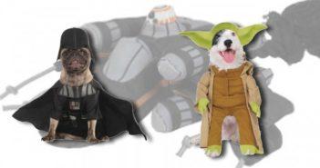 Animalis fait voyager ton chien dans les étoiles_2