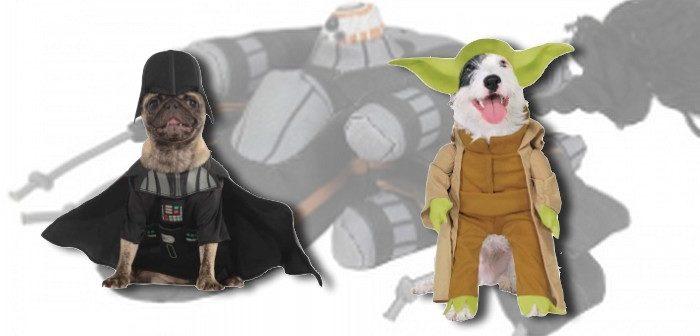 Avec Star Wars, Animalis fait voyager ton chien dans les étoiles